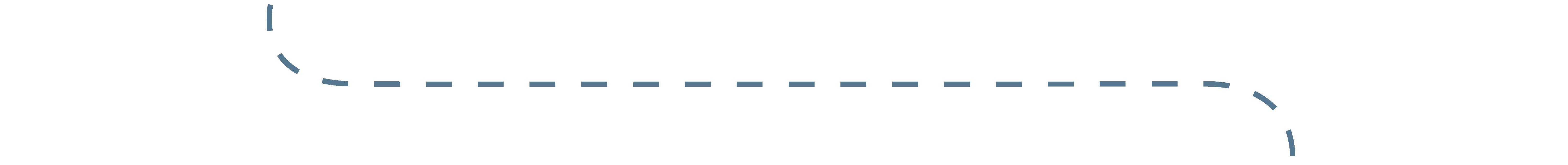 Dotted Line Divider